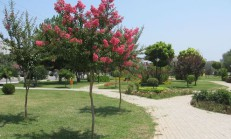 Adana Altın Koza Parkı