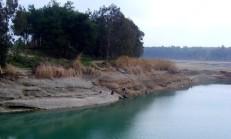 Adana Olta Balıkçılığı