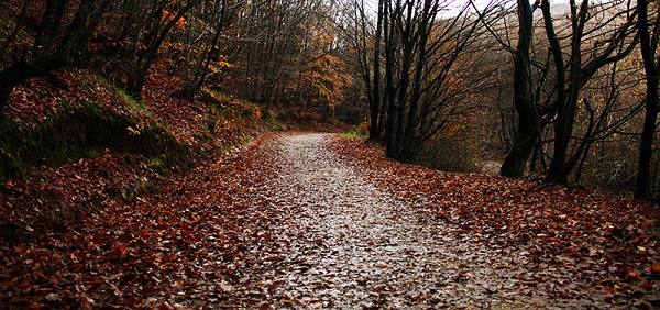 Yolu doğayla başbaşa kalmanız için müthiş bir güzellik